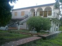 Image for Pedara